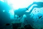 A new dive site in Di Tamerah