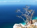 New trekking route in Socotra - On the edge of the lost world