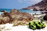 Socotra Picture of the Day: shoreline at Archer