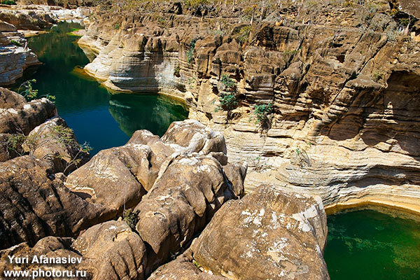Socotra Picture of the Day: The largest fresh-water pool on Socotra