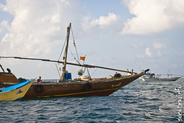 Socotra Picture of the Day: Fishing boats in the bay Shuab