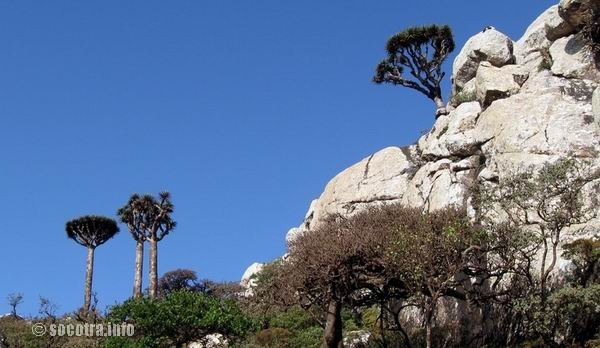 Socotra Picture of the Day: The mountainous part of Socotra