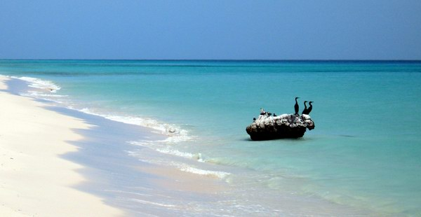 Socotra in summer time
