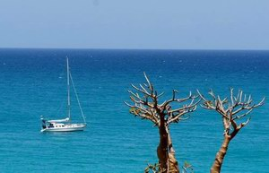 Sailing on Socotra, Arabian Sea, Indian Ocean