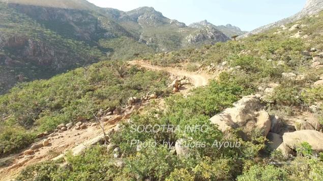 Sailor's letter: Socotra, Paradise island