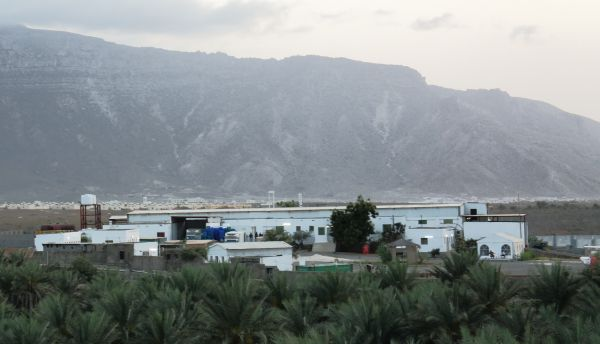 New fish factory on Socotra