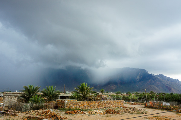 Socotra in May