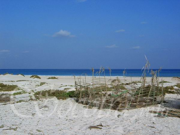 Socotra Picture of the Day: Beach in south part of Socotra