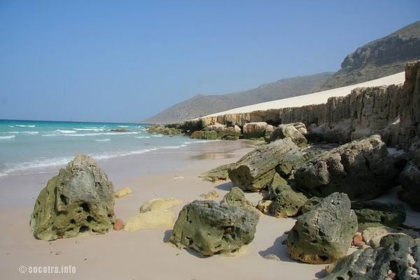 Socotra Picture of the Day: beach on Delisha