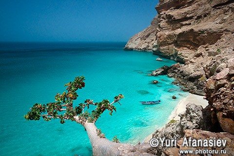 Socotra Picture of the Day: Bay near ras Bidu
