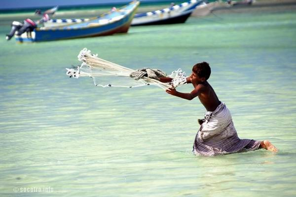 Socotra Picture of the Day: fishing in Socotra