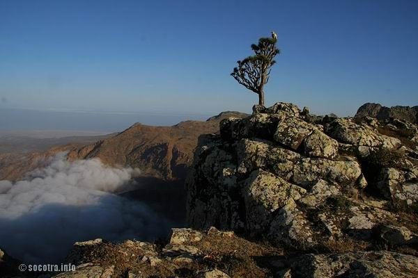 Socotra Picture of the Day: Sunrise at Skant