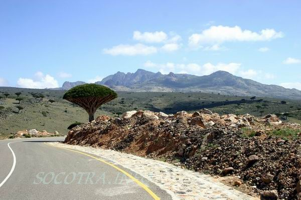 Socotra Picture of the Day: views across Skant area