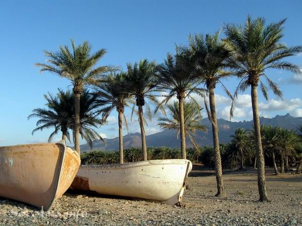 Socotra Picture of the Day: Hadibo