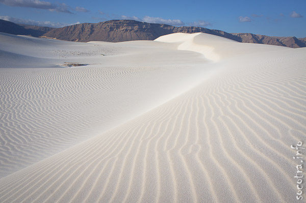 Socotra Picture of the Day: Sand dunes in Stero