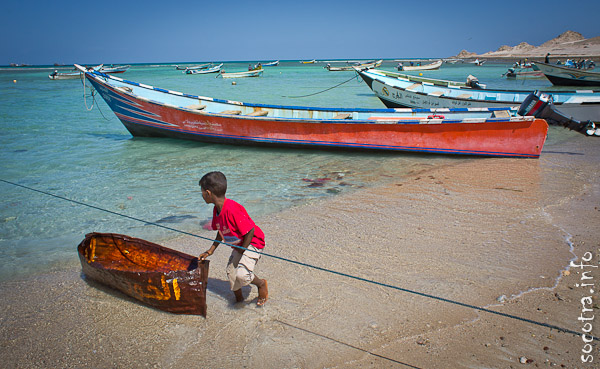 Socotra Picture of the Day: А little fisherman