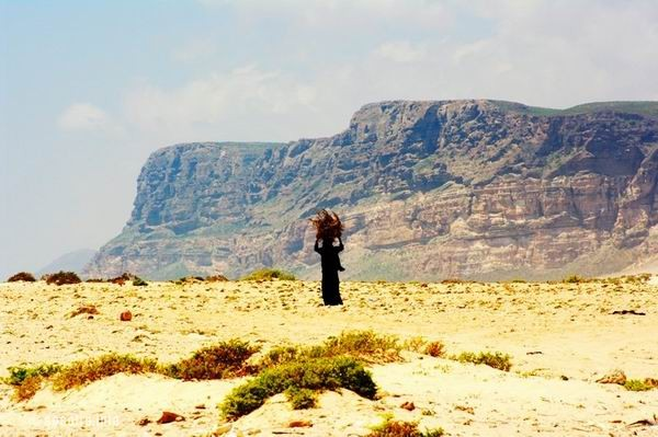 Socotra Picture of the Day: A local woman carrying a bundle of brushwood