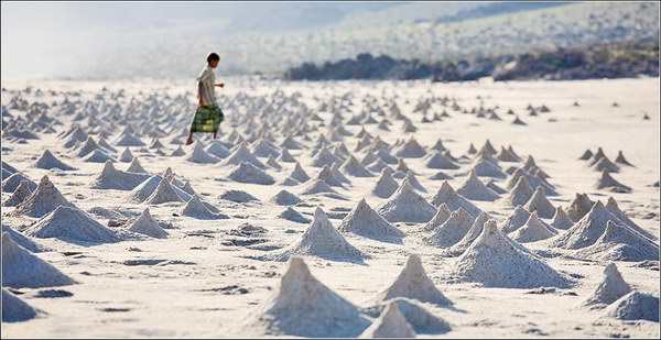 Socotra Picture of the Day: Crab houses on the beach