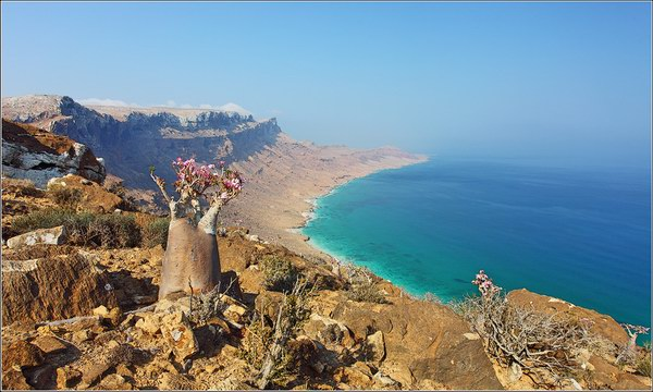 Socotra Picture of the Day: The eastern point of the Socotra