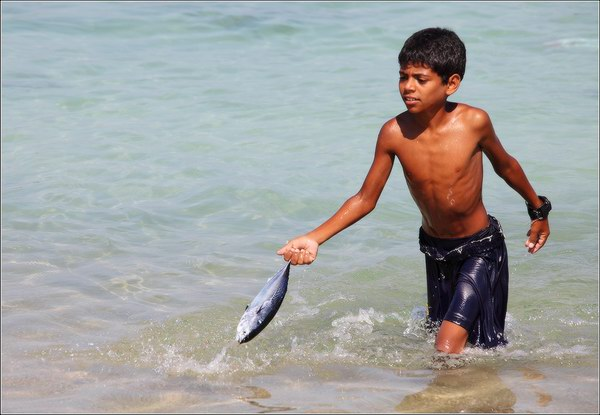 Socotra Picture of the Day: Easy fishing