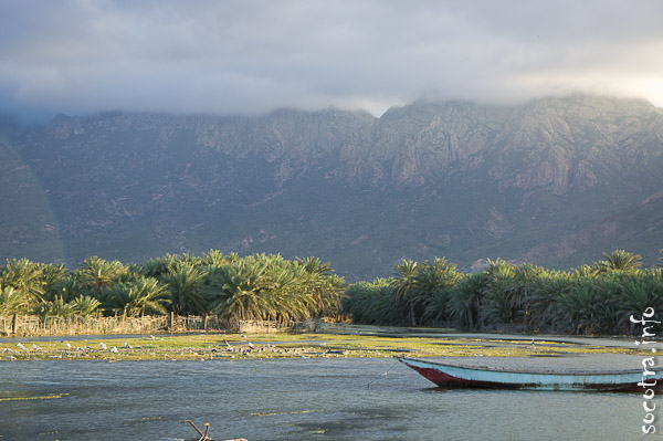 Socotra Picture of the Day: Landscapes in Hadibo