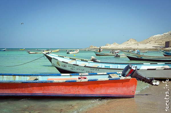 Socotra Picture of the Day: Fishing boats