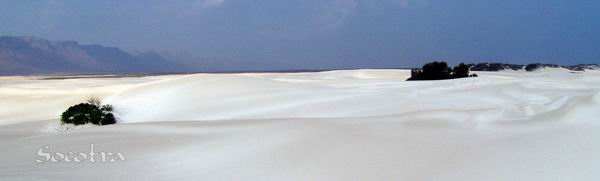 Socotra Picture of the Day: Sand dunes in Noget