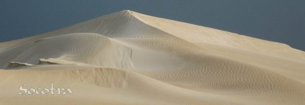 Socotra Picture of the Day: Sand dune in Noget