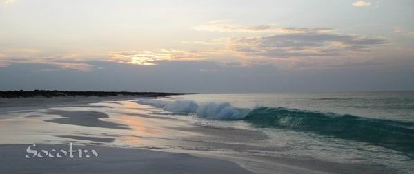 Socotra Picture of the Day: Indian Ocean at DiSebro