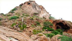 Russian archeologists on Socotra