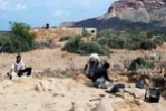 Important discoveries of Russian archaeological expedition on Socotra