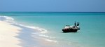 Spend your holiday on Socotra in summer, the time of many curious and interesting things