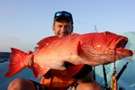 Professional fishing tours to Socotra archipelago