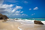 Wild beaches in Socotra